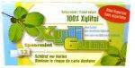Xyli-Gum Kaugummi Grüne Minze