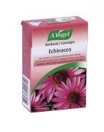 Echinacea-Kräuter-Bonbons