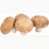Champignon 250 g